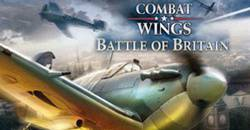 Combat Wings logo