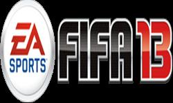 Cerinte Fifa 2013