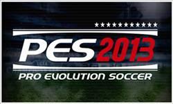 Cerinte PES 2013